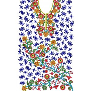 Traditional Indian Embroidery dress 1