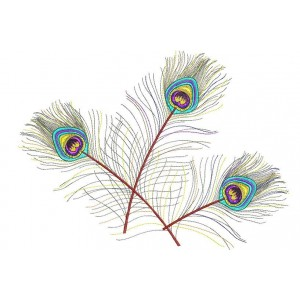 Colourful peacock tails decor designs