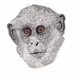 Wild Monkey Face Machine Embroidery Design