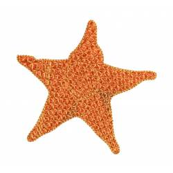 Star Fish Machine Embroidery Design